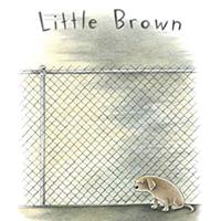 Signing Children's Books: Little Brown