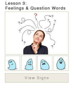 Lesson 3: Feelings & Question Words